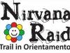 nirvana-raid-logo